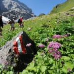 Lesachtal Kärnten – ein Paradies für Gipfelstürmer und Genusswanderer