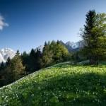 Das Rosental Kärnten besticht mit Canyoning und fantastischen Panoramablicken