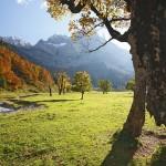 Nassfeld Kärnten: Der Himmel auf Erden für Mountainbiker