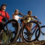 E-Bikes als Trend: Die Kurve nach oben geht seit Jahren steil bergauf