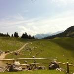 Estergebirge: Mit dem Mountainbike zur Hohen Kiste