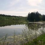 Mountainbike in Feldmoching: Die große Kranzbergrunde