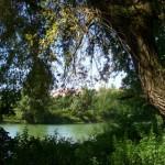 Isar Radtour: Vom Englischen Garten bis Garching
