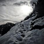 Notkarspitze: Wandern in den Ammergauer Alpen