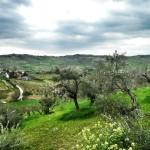 Rennradtour von Rimini nach Sogliano al Rubicone