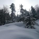 Sylvensteinsee Wandern: Winterwanderung vom Sylvensteinspeicher zum Schürpfeneck