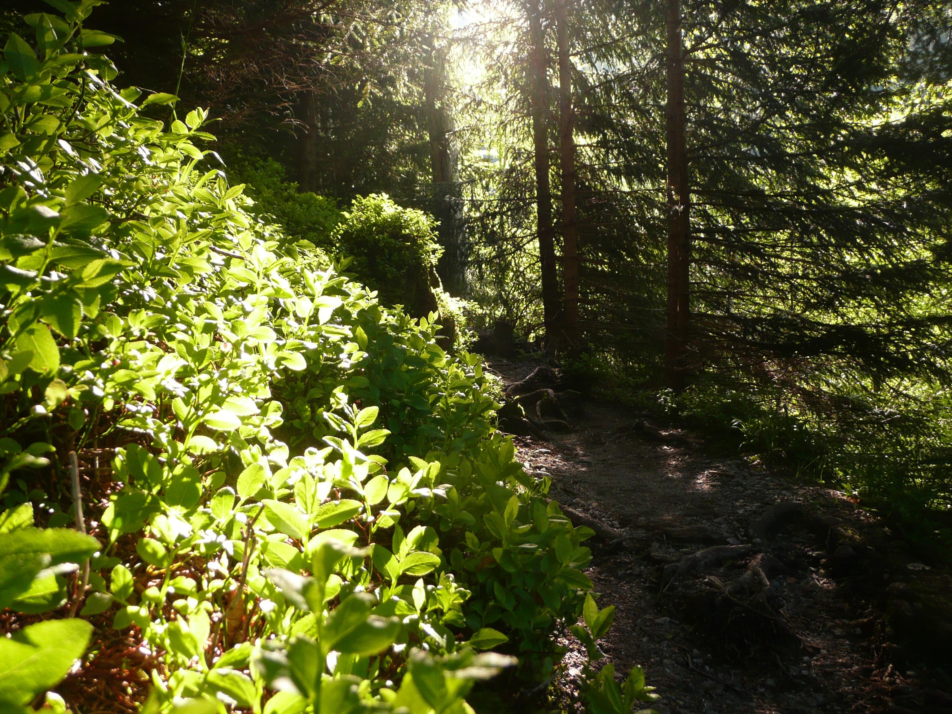 Ettaler Mandl Klettersteig : Ettaler mandl klettersteig bergwanderung auf das