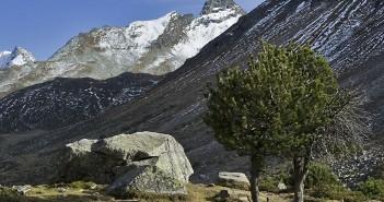 Die Alpenregion Bludenz
