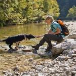 Ferien mit Hund? Ein paar Tipps