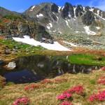 Wildspitz: Höchster Berg im Kanton Zug