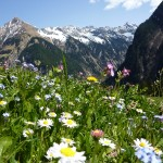 Das Lechtal in Tirol