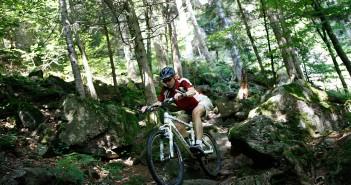 Mountainbike im Schwarzwald