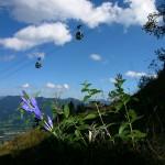 Im Brauneck Wandern – ein Berg voller Möglichkeiten