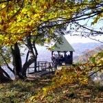 Der Donau Zollernalb Weg – vom Donaudurchbruch bis zur Schwäbischen Alb