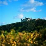 Der Welterbesteig Wachau – Wandern auf die sanfte Tour