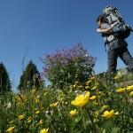 Der Burgenweg im Frankenwald ist ein kulturhistorisches Wandererlebnis