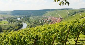 Die Volkacher Mainschleife im Fränkischen Weinland