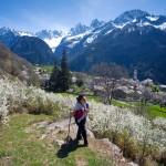 Die Via Bregaglia: Panoramawanderungen zwischen Schweiz und Italien