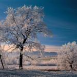 Das Blaue Land in Weiß: Winter rund um Murnau