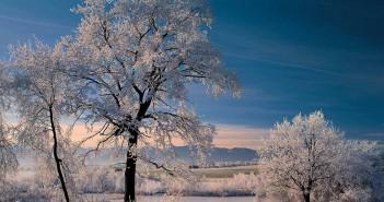 Das blaue Land im Winter