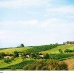 Das Südburgenland – sanfte Hügel gehen in die pannonische Ebene über