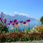 Wandern am Genfer See